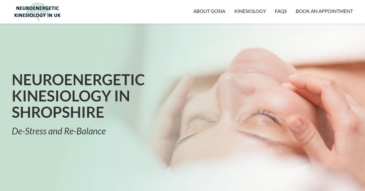 energetic kinesiology principles and practice